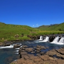 Wild Scenic Safaris's photos